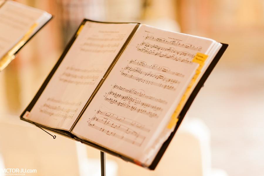 Музыкальное сопровождение на свадьбе в Праге