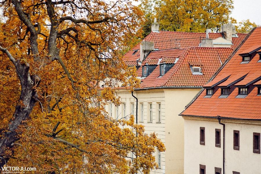 Чем занять себя в Праге в октябре