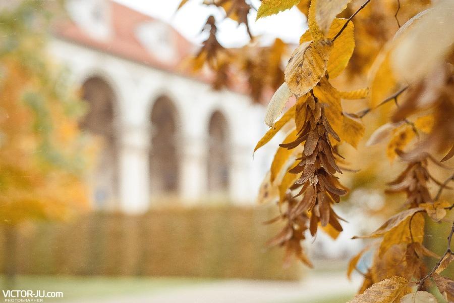Осенняя прогулка в Праге