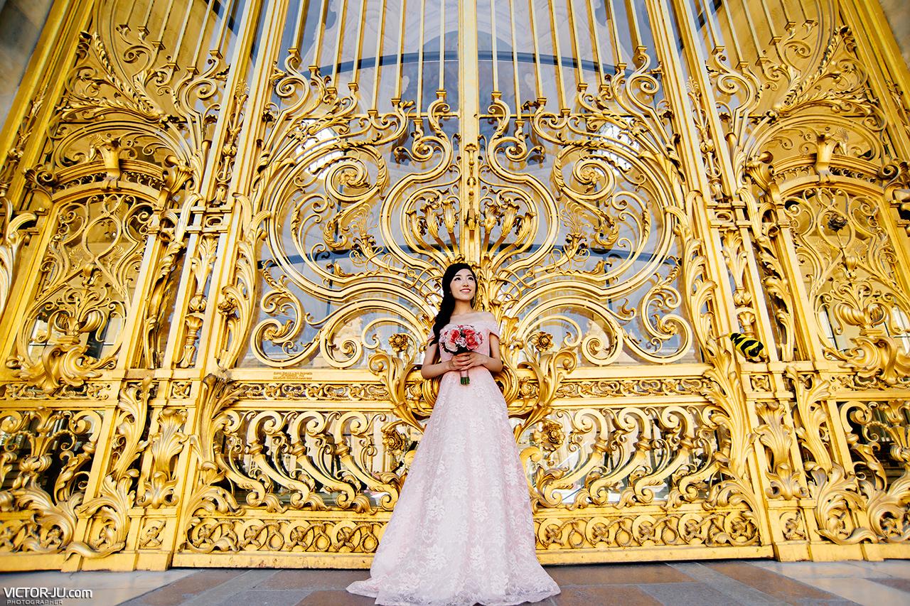 Engagement photo in Paris